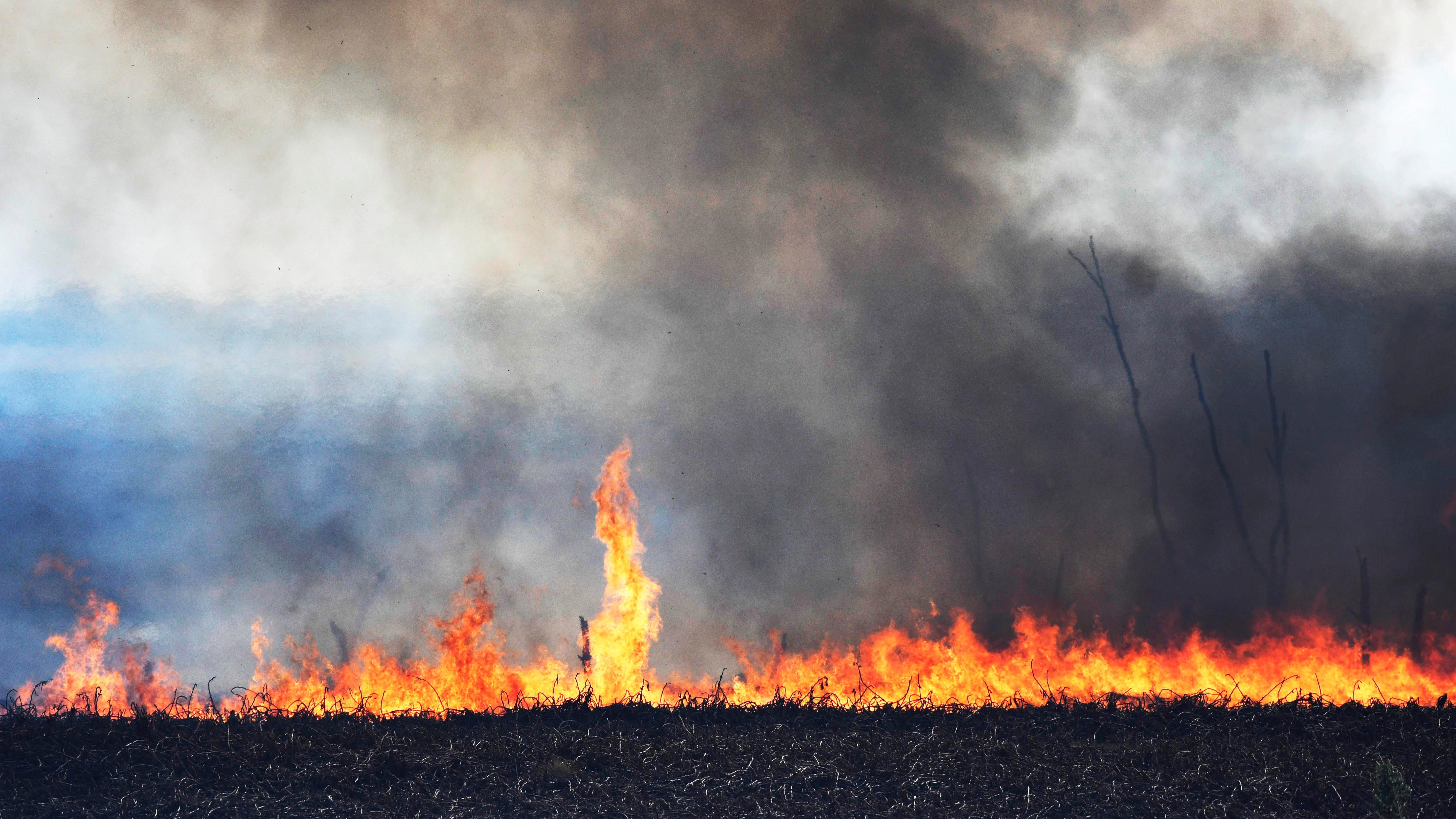 Focos de incendio en islas del Delta del Paraná(Télam)