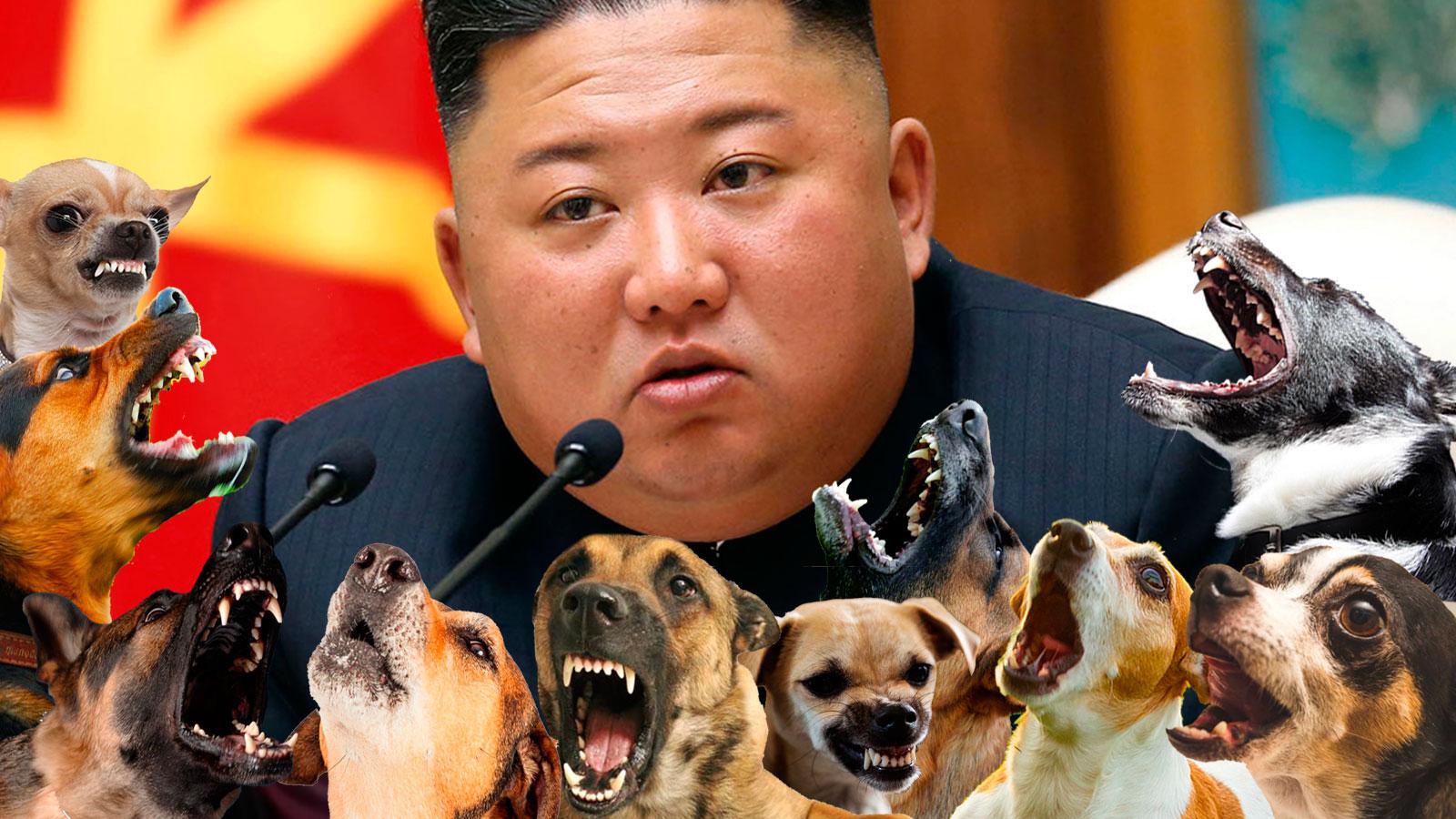 Si algo le faltaba, es que no lo quieran ni los perros