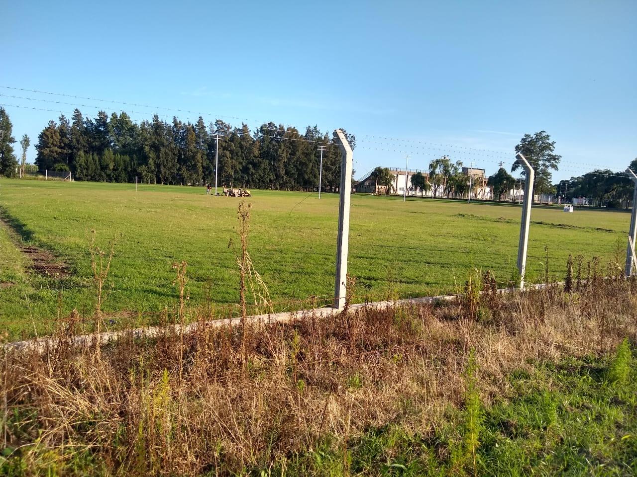 Los delincuentes dejaron sólo los postes que sostenían el alambrado.