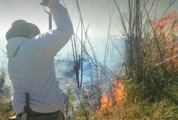 Los incendios en las islas, desde adentro.