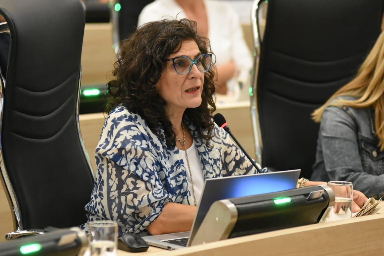 La concejala López piensa en un programa de fácil acceso para las víctimas.