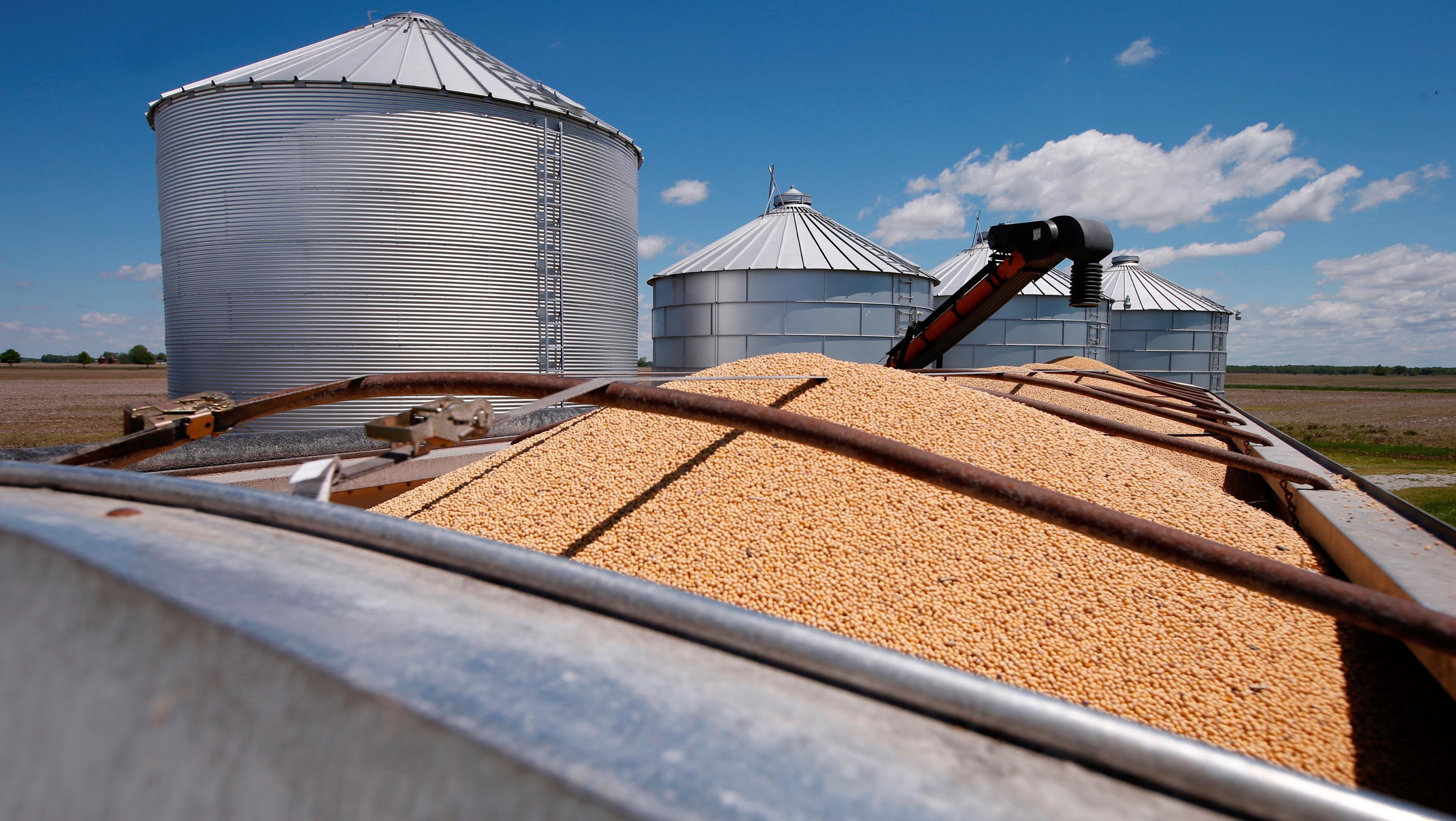 En lo que va del año Santa Fe procesó 21,5 millones de toneladas de soja.