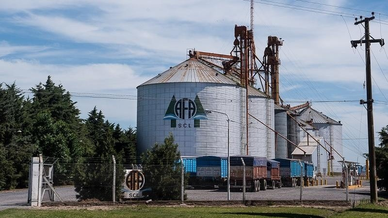 Con 140 plantas de acopio, controla entre 5 y 6% de la producción nacional.
