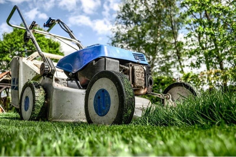La intendencia procura mayor desmalezamiento al liberar el oficio jardinero.