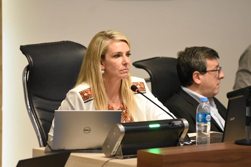 Inseguridad: Schmuck puso al Concejo en línea con municipio, provincia y Nación.