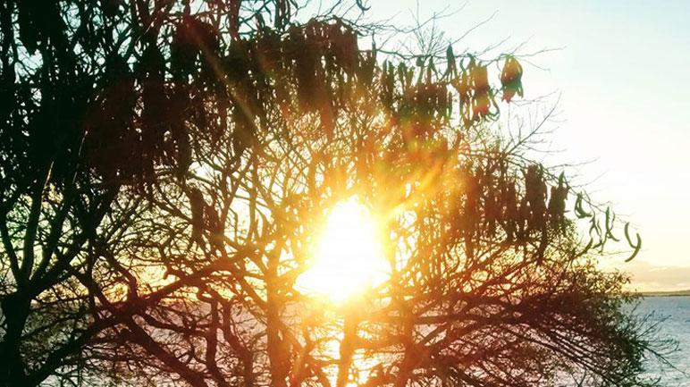 El sol dominará la escena durante sábado y domingo.