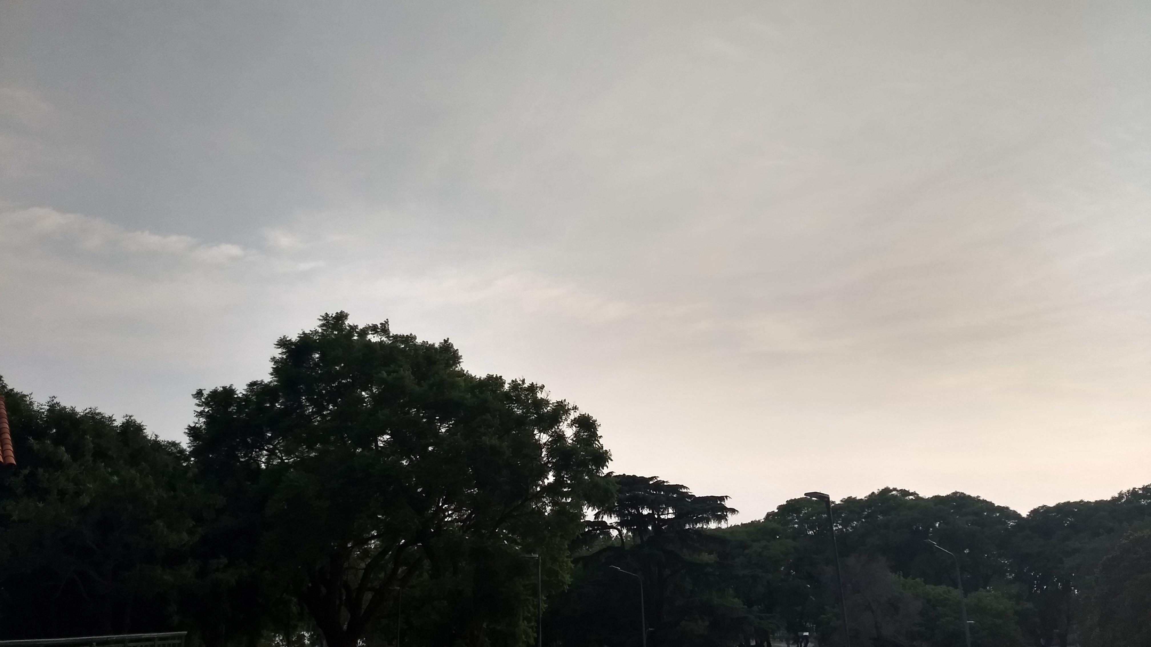 Ganas de lluvia