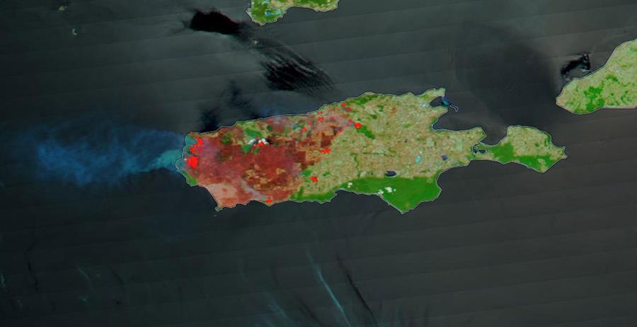 Foto satelital de Kangaroo Island: el avance del fuego es elocuente.