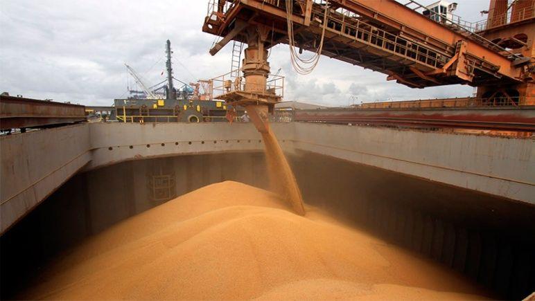 La comercialización de granos pasaría a tributar el 1%.