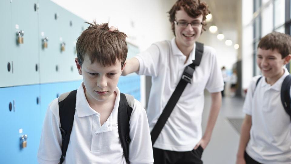 El acoso escolar no es más que un reflejo de la sociedad en la que vivimos.