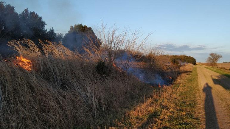Los incendios de pastizales son recurrentes y cada vez más grandes.