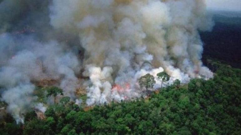 Los reiterados focos de fuego están perjudicando a la zona de Brasil.