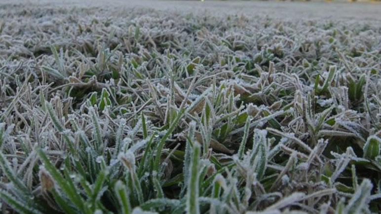 Las zonas rurales se verán afectadas por heladas.