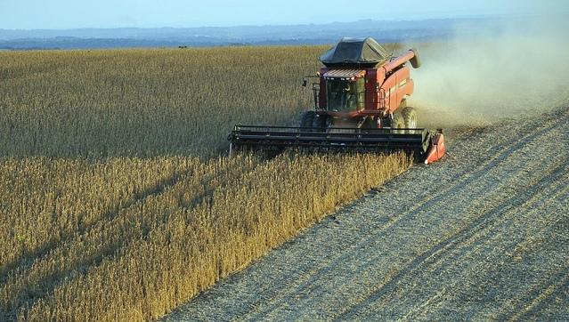 Números rojos. Desde la Federación Agraria están preocupados.