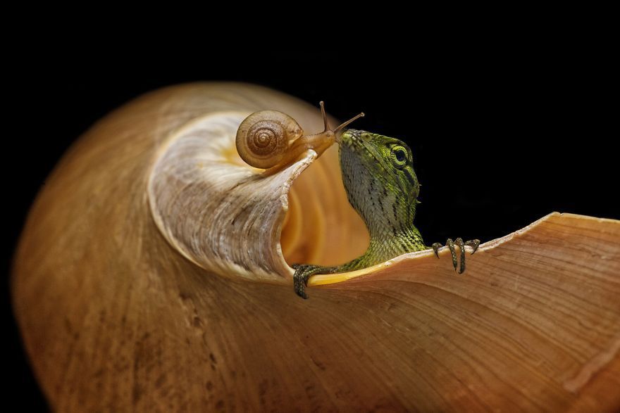 Concurso de fotografía #Small2019 by AGORA images