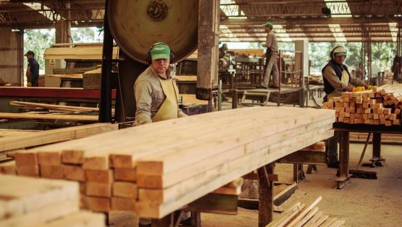 La industria del mueble cayó 37,5% en el mes de diciembre