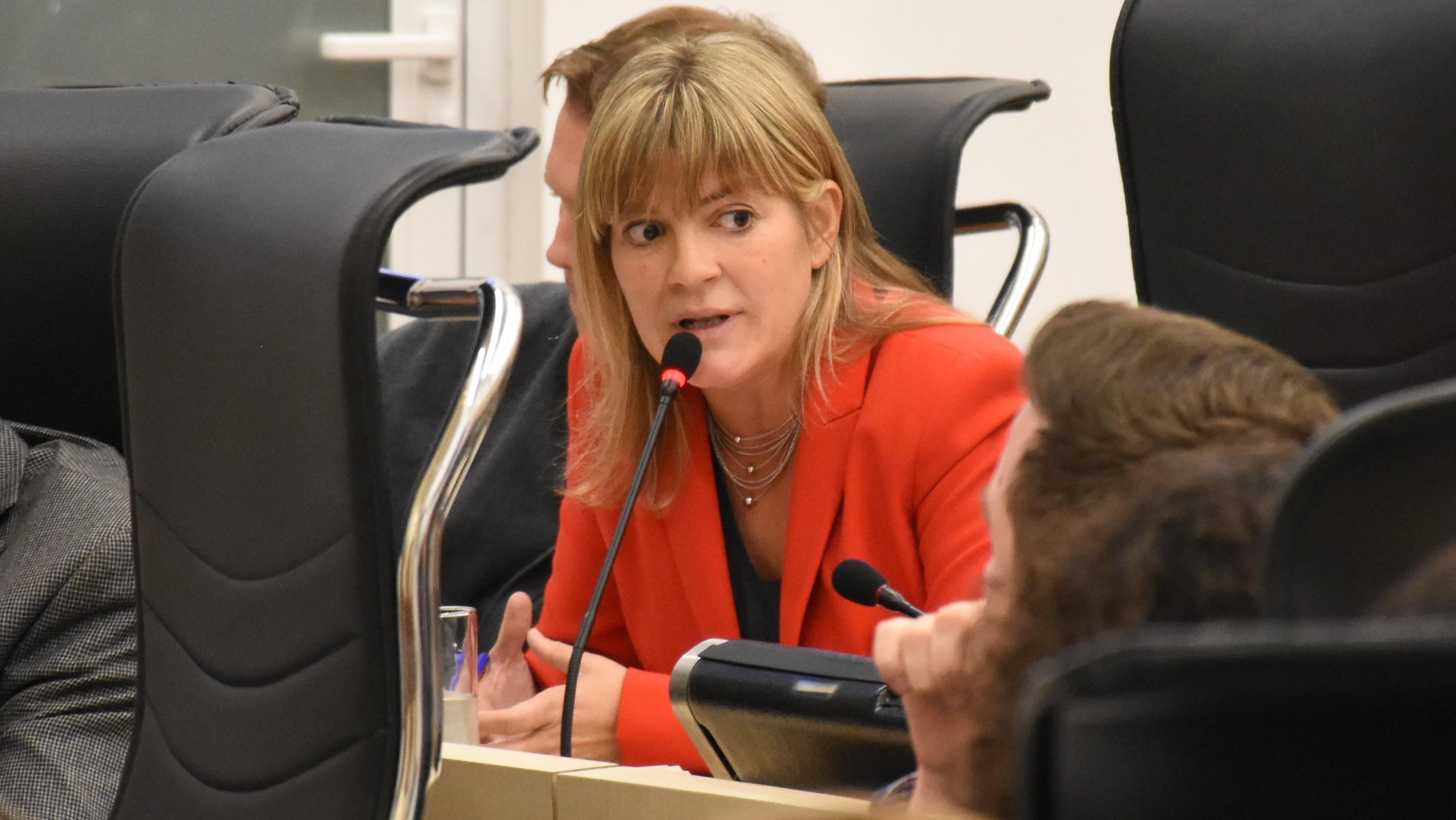La concejala oficialistaVerónica Irizar