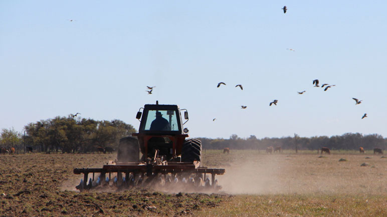 La ayuda para los productores incluye prorrateo de impuestos y créditos bancarios.