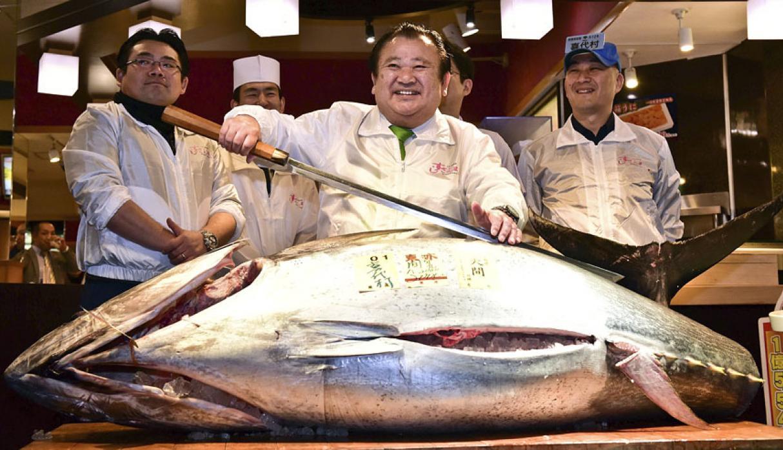 Subasta de atún en Japón