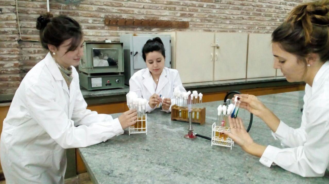 Los estudiantes en plena experimentación en el laboratorio.