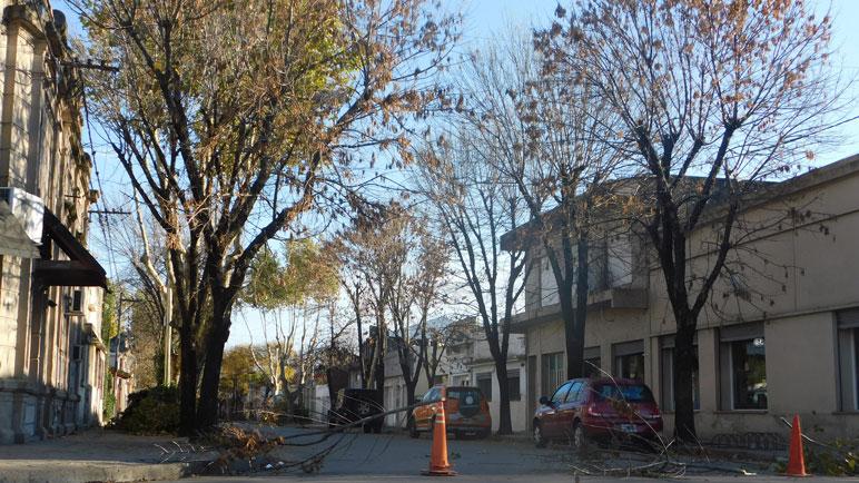 El paso por Mitre, entre Beltrán y Escalada estuvo interrumpido por la poda.