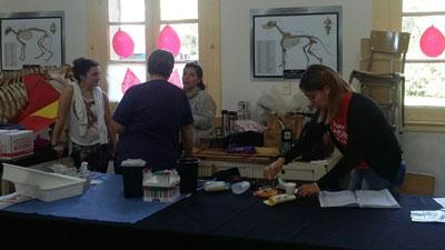 Este miércoles se realizó la donación de sangre en Casilda.