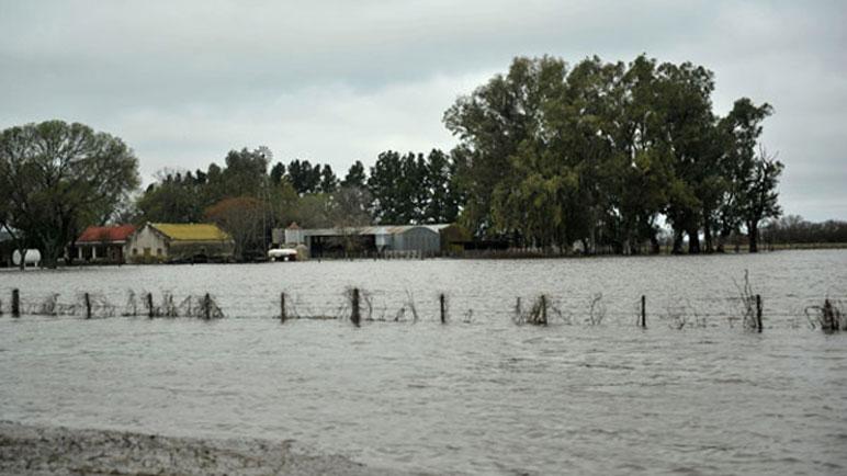Varios campos y cascos urbanos se vieron afectados.