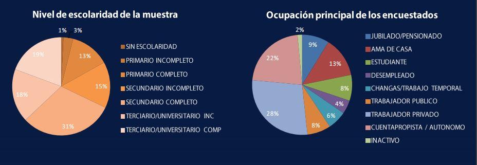 Gráficos que muestran el nivel de instrucción y ocupación de los encuestados en los diferentes barrios.