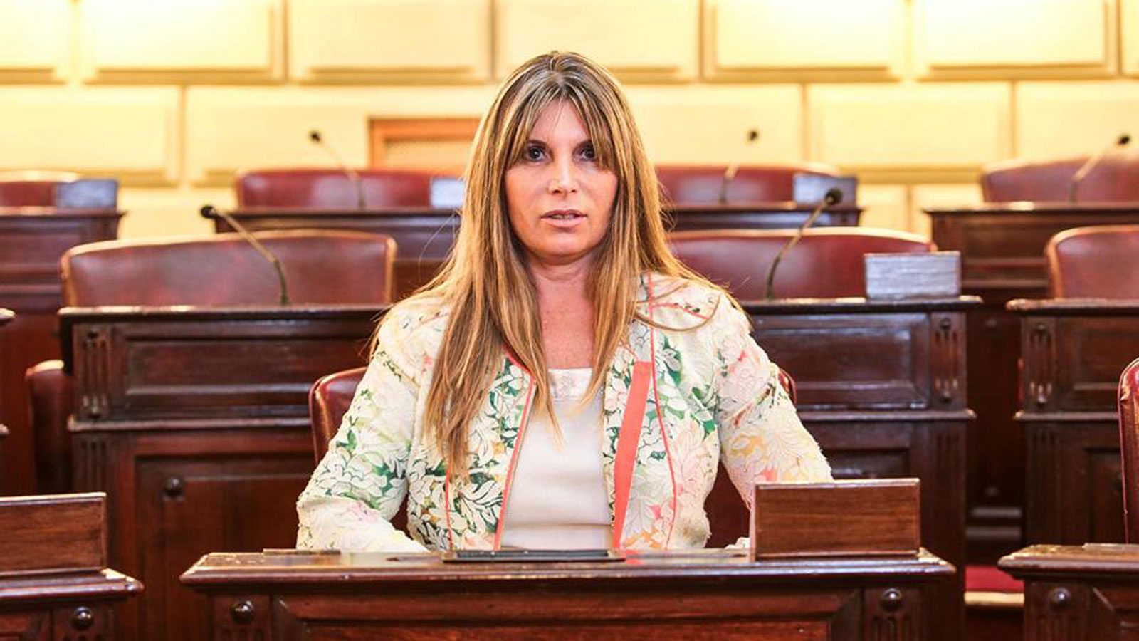 La diputada Cinalli mostró preocupación ante el suceso del fin de semana.
