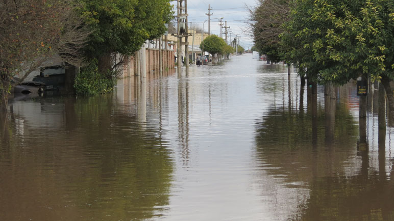 El trabajo analiza las lluvias de los últimos 40 años.