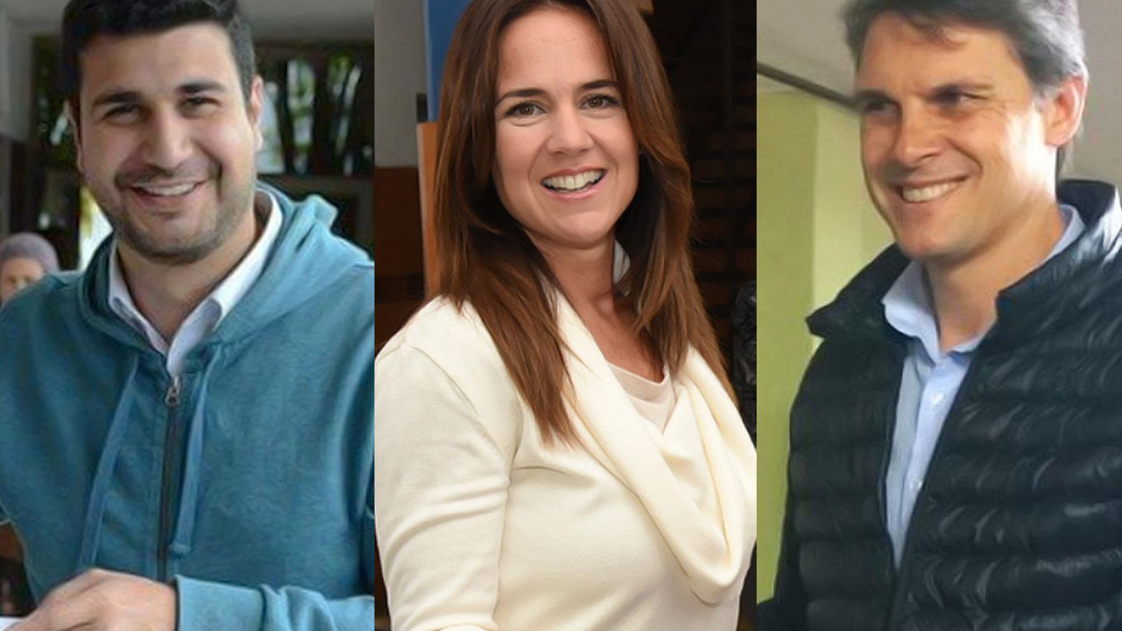 Cleri, Anita Martínez y Grandinetti, los nuevos diputados.