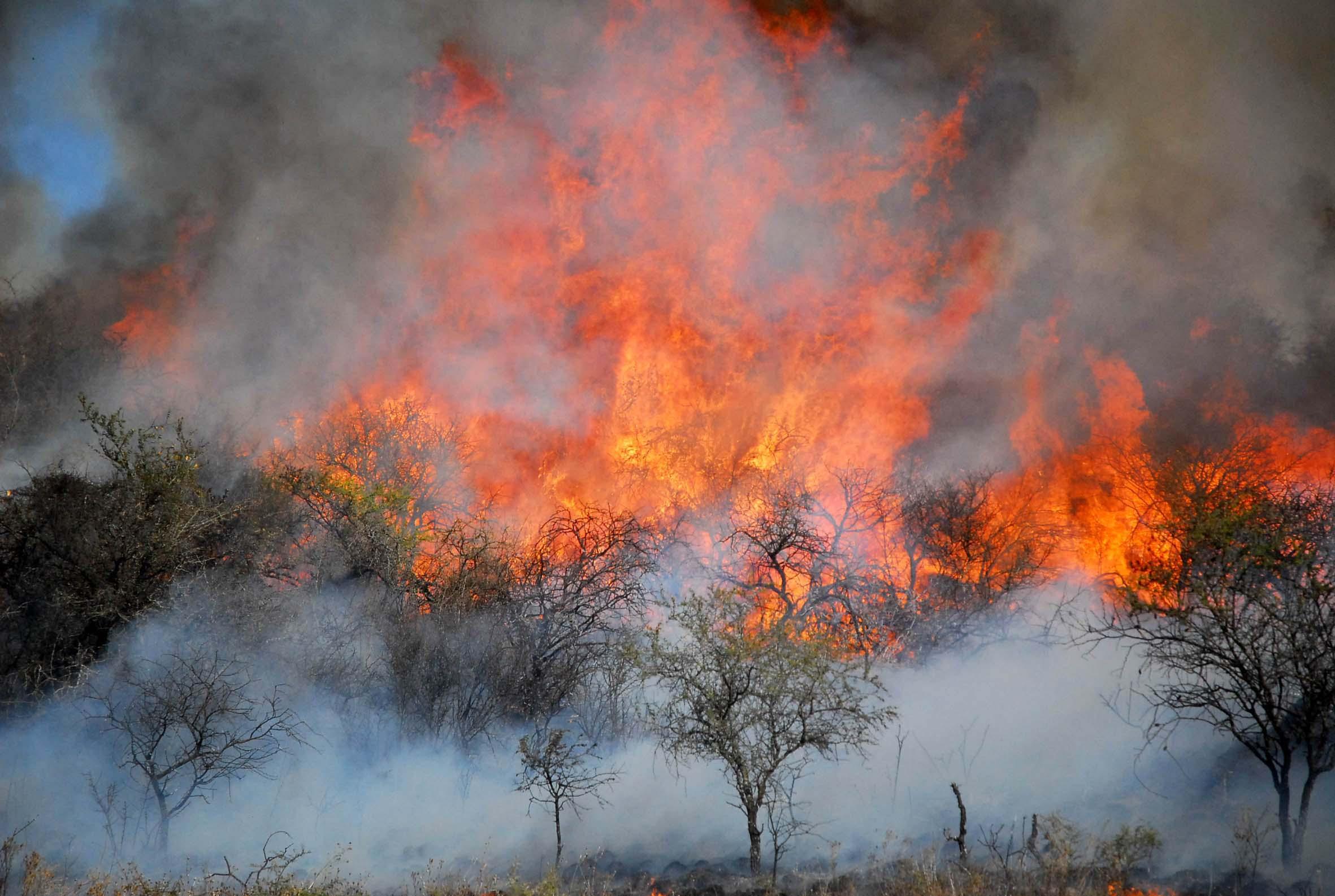 26/08/2020; Córdoba: Fotografía de archivo del día 13/07/2009. El combate de los incendios forestales en la provincia de Córdoba se concentraba esta mañana en tres grandes focos ubicados en la región de Capilla del Monte, Casa Grande y Valle Hermoso, en el valle de Punilla, luego de que se lograra sofocar el fuego en distintos puntos.Foto: Irma Montiel/Télam/CGL