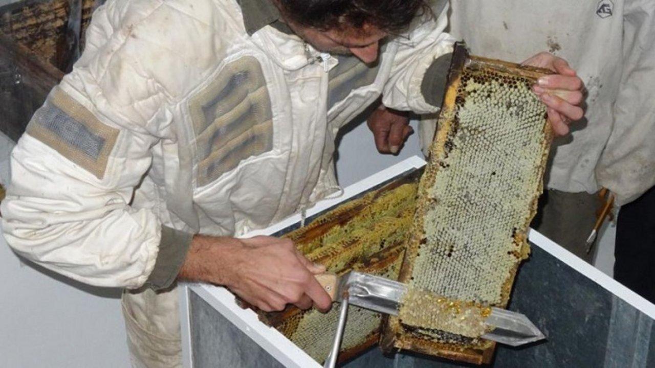 Casilda tiene una sala de extracción propia, elemento más que importante para los apicultores.