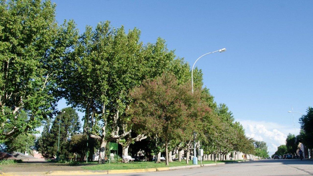 Antes de fin de año podría haber una respuesta al proyecto de Arequito ciudad.