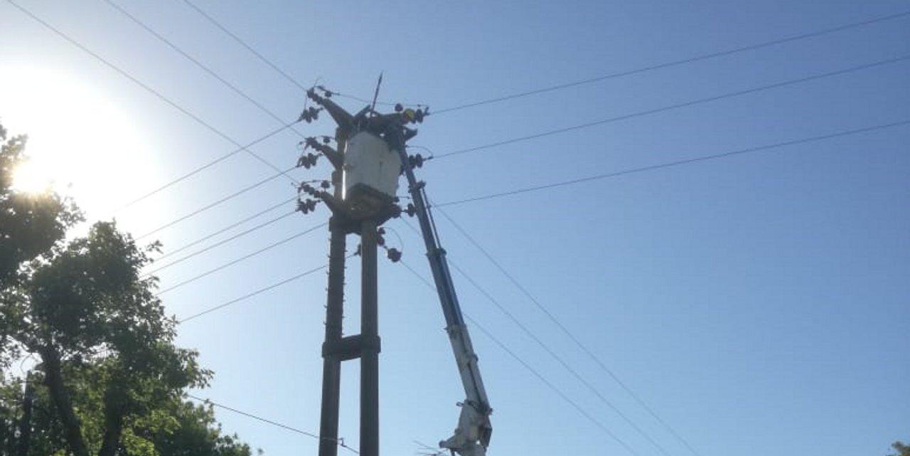 ¿Por qué una paloma pueda dejar sin luz a varios sectores de la ciudad?